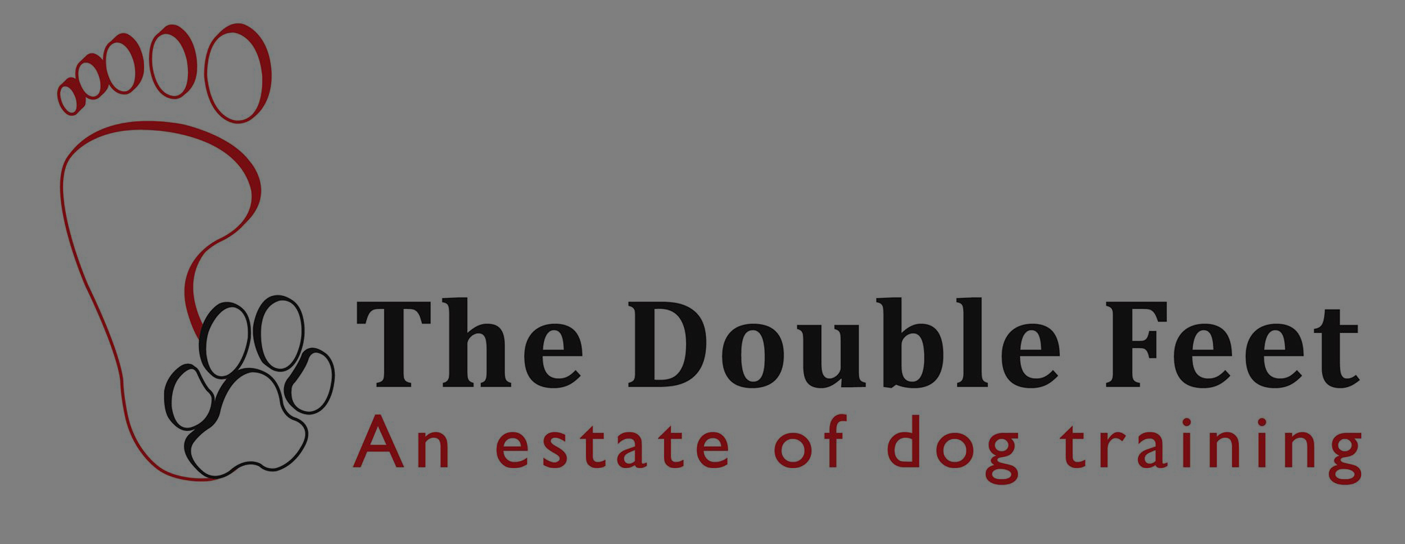 cropped-the_double_feet_logo_recht-e1505385384370