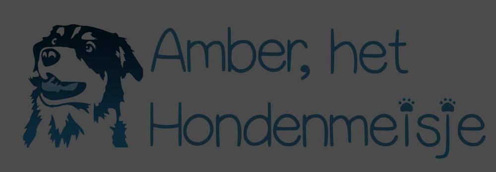 logo_ahhm_hde